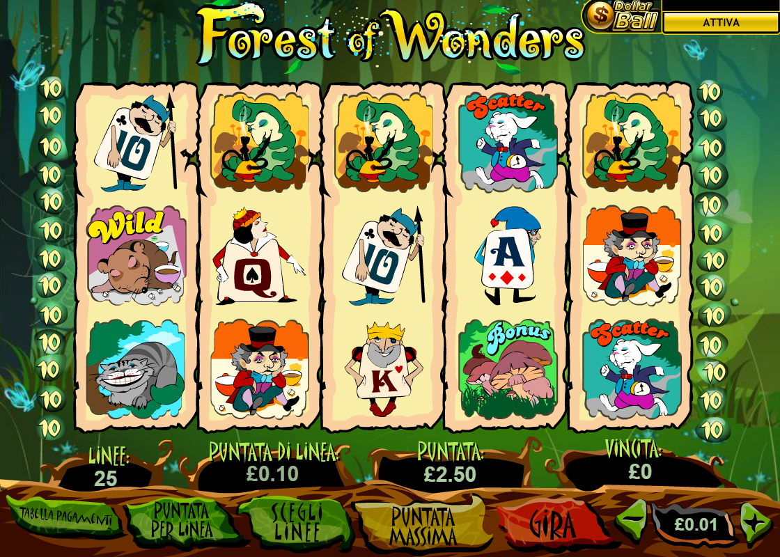 Forest Wonders