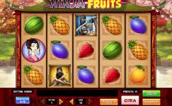 giochi di frutta gratis ninja fruits